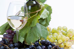 Wijn in glas Royalty-vrije Stock Fotografie