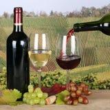 Wijn het gieten in glas in de wijngaarden royalty-vrije stock foto