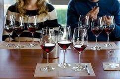 Wijn het proeven in Langhe Italië royalty-vrije stock afbeelding