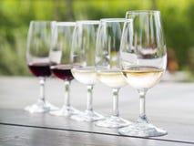 Wijn het proeven in Stellenbosch Stock Fotografie