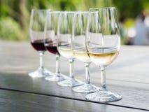 Wijn het proeven in Stellenbosch Stock Afbeeldingen