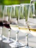 Wijn het proeven in Stellenbosch Stock Foto