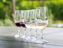 Wijn het proeven in Stellenbosch Stock Foto's