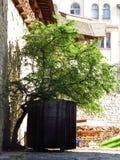 Wijn houten vat Stock Afbeelding