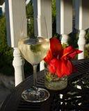 Wijn op een dek in de zomer Stock Afbeelding