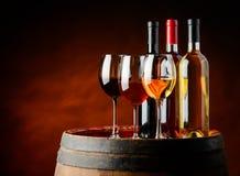 Wijn in wijnkelder Stock Fotografie