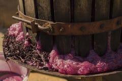 Wijnbereiding Technologie van wijnproductie royalty-vrije stock afbeelding