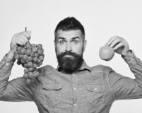 Wijnbouw en het tuinieren concept De mens met baard houdt bos van groene druiven en appel royalty-vrije stock foto's