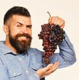 Wijnbouw en het tuinieren concept Winegrower met netelig het glimlachen gezicht royalty-vrije stock afbeeldingen