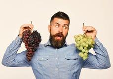 Wijnbouw en het tuinieren concept Winegrower met verrast gezicht royalty-vrije stock fotografie