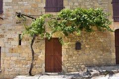 Wijnbouw over deuropening royalty-vrije stock foto's