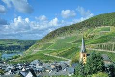 Wijndorp van Senheim, de Vallei van Moezel, Duitsland stock foto's
