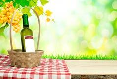 Wijnfles met mand in aard royalty-vrije stock afbeeldingen