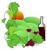 Wijngaard Royalty-vrije Stock Afbeeldingen