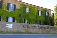 Wijngaard Chateau Sainte Roseline in de Provence Stock Fotografie