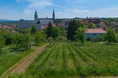 Wijngaard in de lente, Bamberg Royalty-vrije Stock Afbeeldingen