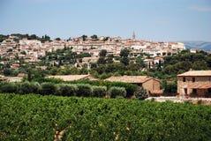 Wijngaard in de Provence met dorp op rug Royalty-vrije Stock Afbeeldingen