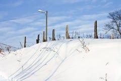 Wijngaard in de sneeuw Stock Foto's