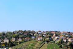 Wijngaard en woondistrict in Stuttgart Royalty-vrije Stock Afbeelding