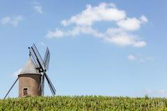 Wijngaard met oude windmolen in Moulin een Opening, Beaujolais Royalty-vrije Stock Afbeelding