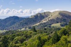 Wijngaard op de heuvels van Sonoma-Provincie, Sugarloaf Ridge State Park, Californië royalty-vrije stock afbeelding