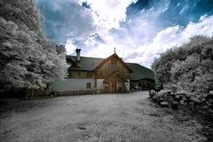 Wijngaard in Polen stock foto