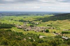 Wijngaard van Solutré dorp, Bourgogne, Frankrijk Royalty-vrije Stock Foto