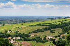 Wijngaard van Solutré dorp, Bourgogne, Frankrijk Royalty-vrije Stock Foto's