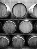 Wijngaard: wijnvatten v royalty-vrije stock afbeelding