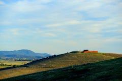 Wijngaard in Yarra-Vallei en wijnkelder op heuvelbovenkant Stock Afbeeldingen