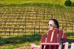 Wijngaarden in Californië, de V.S. stock foto's