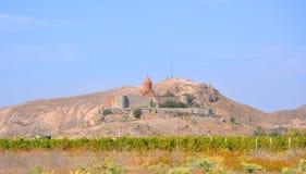 Wijngaarden dichtbij het klooster van Khor Virap Lusarat armenië Stock Afbeelding