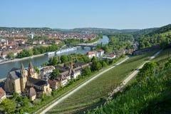 Wijngaarden dichtbij het Marienberg-kasteel in Wuerzburg bij de rivier M stock afbeeldingen