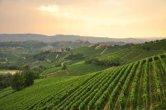 Wijngaarden en heuvels van het Langhe-gebied Piemonte, Italië royalty-vrije stock fotografie
