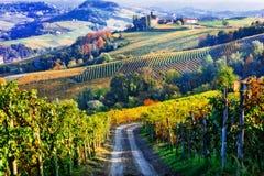 Wijngaarden en kastelen van Piemonte in de herfstkleuren Het noorden van Ita stock foto