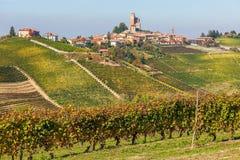 Wijngaarden en kleine stad in Italië Stock Foto's
