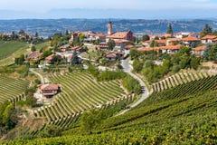 Wijngaarden en kleine stad op de heuvel in Italië Stock Afbeelding