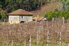 Wijngaarden en landbouwbedrijven in de winter, de vallei van Dos Vinhedos van het Dal stock fotografie