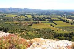 Wijngaarden en olijfgaarden rond Château des Baux, Frankrijk Stock Afbeelding