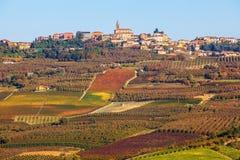 Wijngaarden en stad op de heuvel in Piemonte, Italië Royalty-vrije Stock Foto's