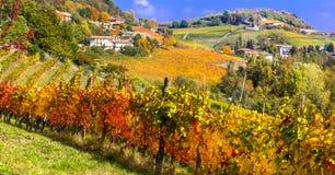 Wijngaarden en toneelplatteland van Piemonte, Barolo Italië royalty-vrije stock foto