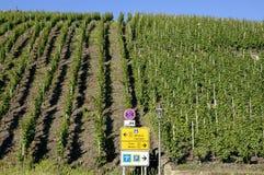 Wijngaarden en verkeersteken op de Moezel, Duitsland Royalty-vrije Stock Afbeeldingen