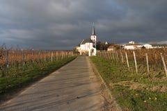 Wijngaarden met kerk in Hochheim, Duitsland Stock Afbeelding