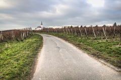 Wijngaarden met kerk in Hochheim, Duitsland Royalty-vrije Stock Afbeeldingen
