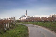Wijngaarden met kerk in Hochheim, Duitsland Royalty-vrije Stock Fotografie