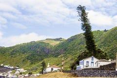 Wijngaarden op de Azoren, Portugal Stock Foto