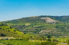 Wijngaarden op de hellingen van de Troodos-Bergen Zonnige de zomerdag in Cyprus royalty-vrije stock foto