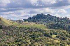Wijngaarden op de heuvels van Sonoma-Provincie, Californië royalty-vrije stock afbeeldingen