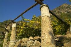 Wijngaarden op de oude die weg via Francigena wordt geroepen Stock Afbeeldingen