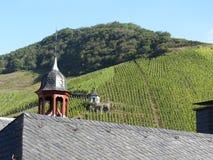 Wijngaarden op de rivier Moezel in Duitsland Royalty-vrije Stock Foto's
